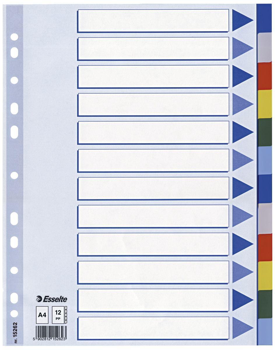 Economy Blanko, A4, Karton, 5 Blatt Esselte Kartonregister farbig